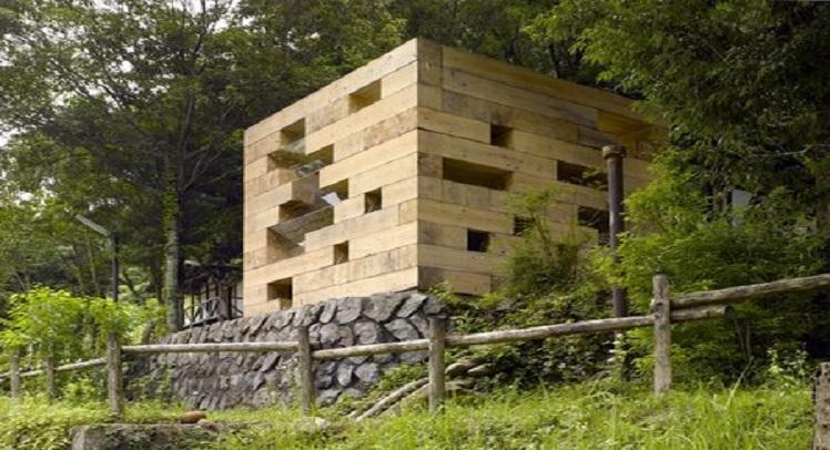 בית עץ – סו פוג'ימוטו אדריכלים