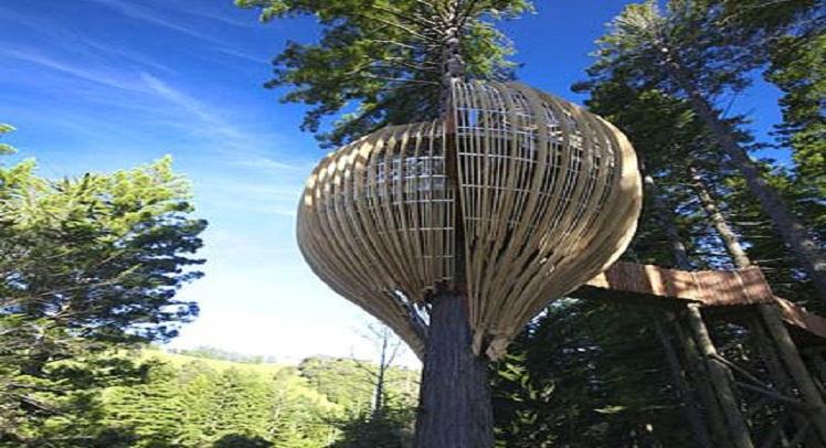 """בית קפה מדהים שעוצב כ""""בית על עץ"""""""
