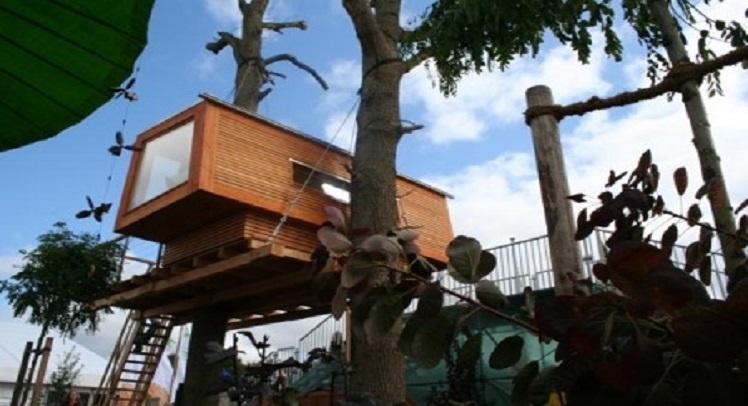 בתי עץ לילדים של באומראום
