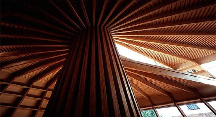 בית עץ – גאומטריה שמושתת על מערכת קואורדינטות פולריות