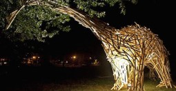 פסטיבל העץ ההונגרי הראשון